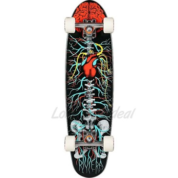 "Riviera Anatomy Of A Skateboard 30"" complete"
